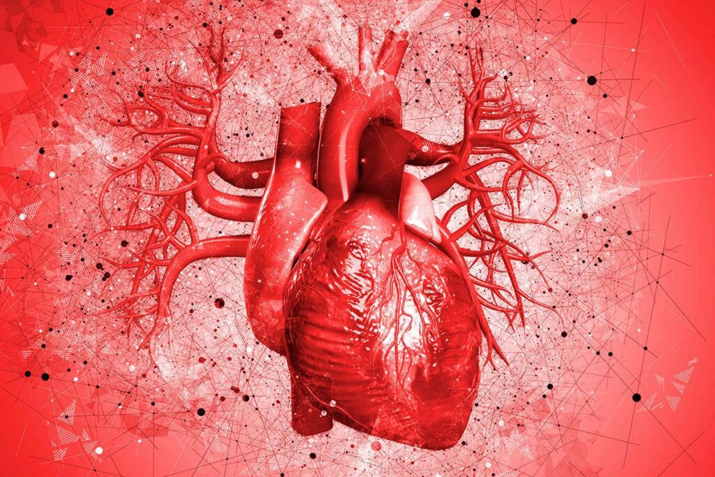 Heart Attack: Causes, Symptoms and Treatment